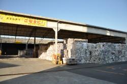 王子マテリア富士第一工場の古紙置き場。1万トン前後の在庫。